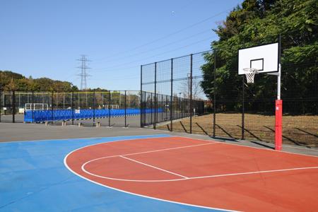 日本の公園にはバスケットゴール